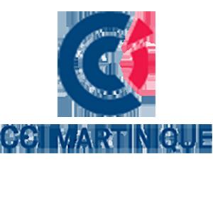 LogoCCIM300