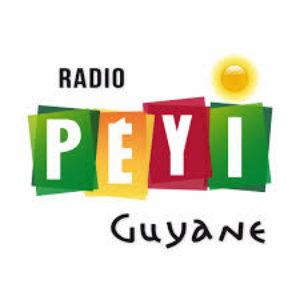 radio peyi jingles by reezom